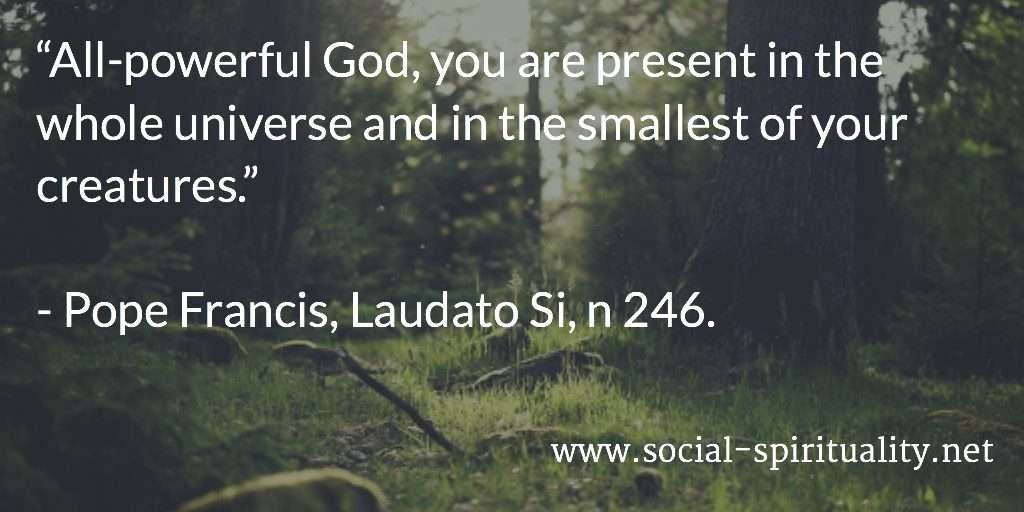 """All-powerful God, you are present in the whole universe and in the smallest of your creatures."" Pope Francis, Laudato Si, n 246."